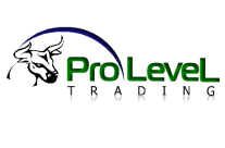 Pro-Level Trading-Addison TX